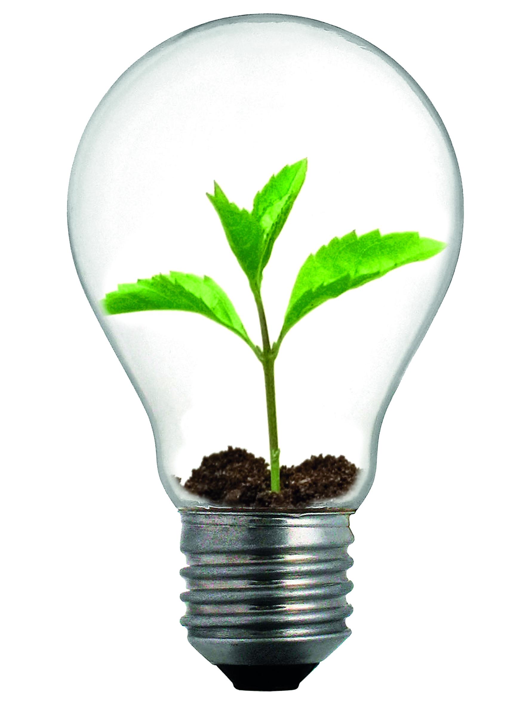 energia-e-ambiente-motori-dello-sviluppo